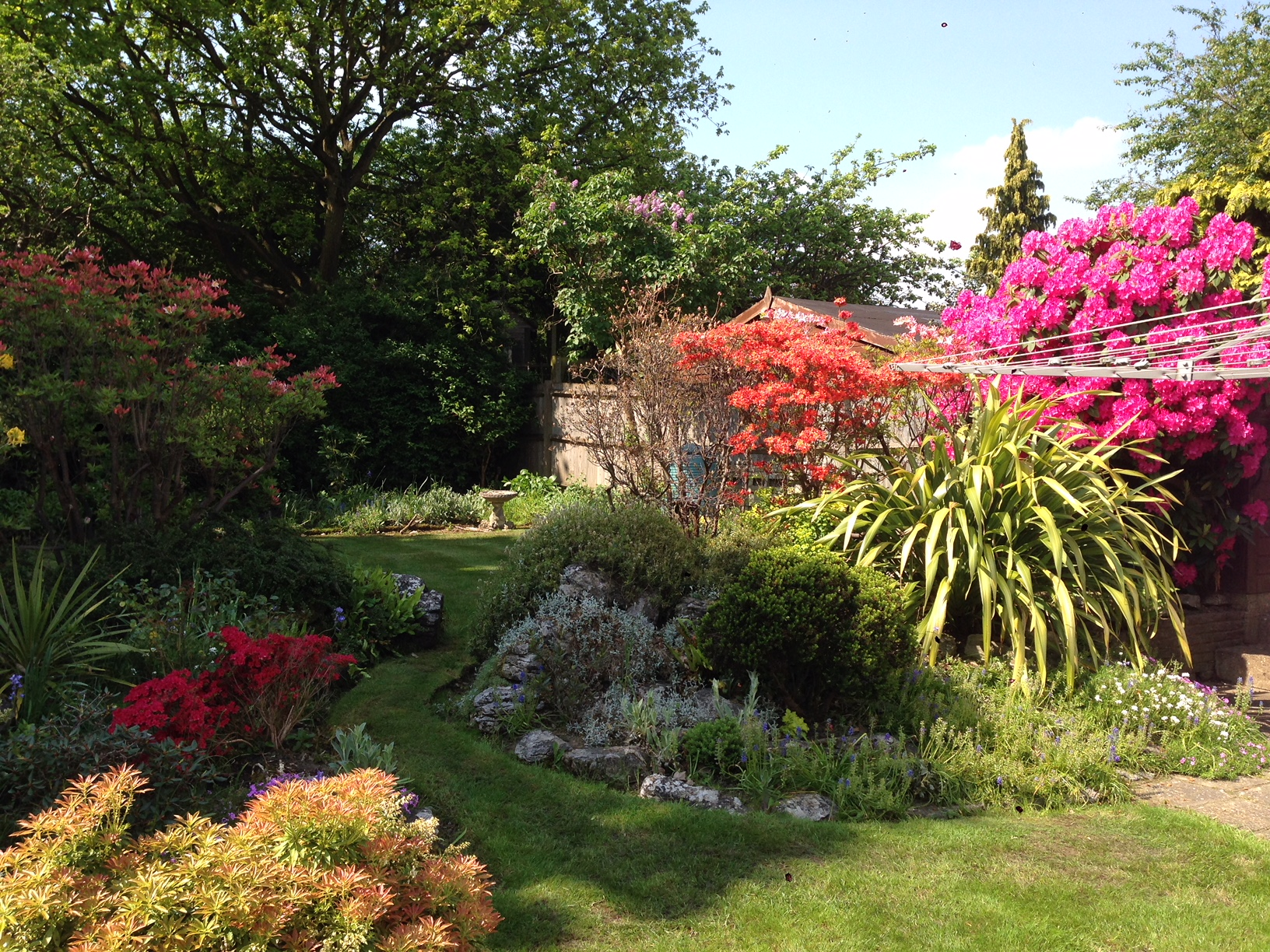 Services garden services for General garden maintenance